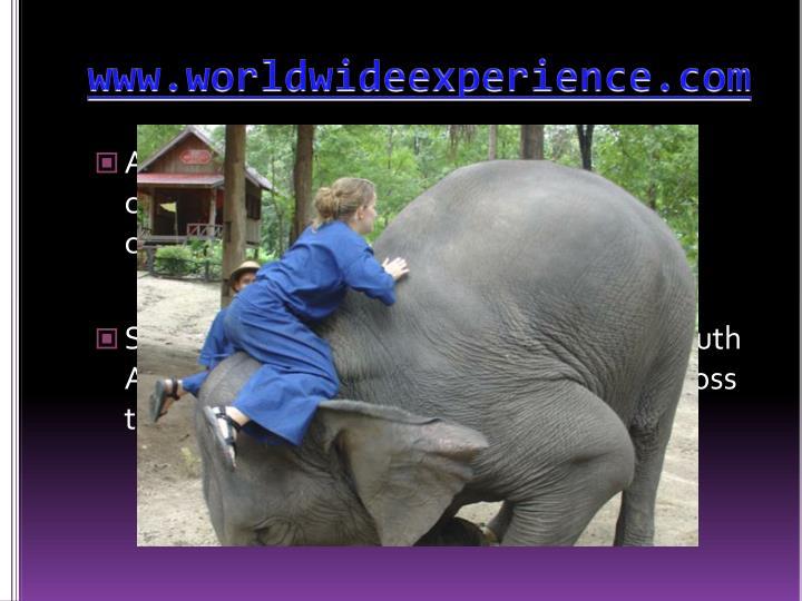 www.worldwideexperience.com