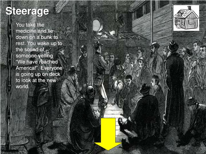 Steerage