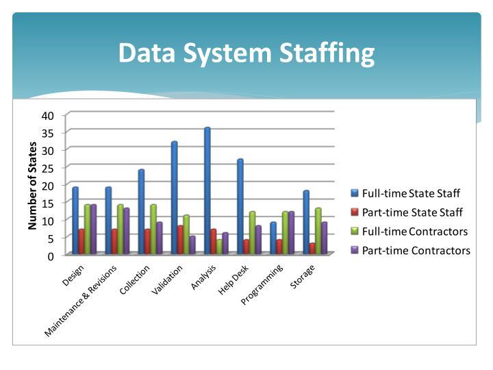 Data System Staffing