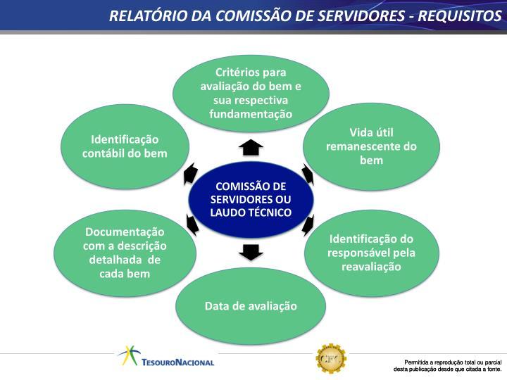 RELATÓRIO DA COMISSÃO DE SERVIDORES - REQUISITOS