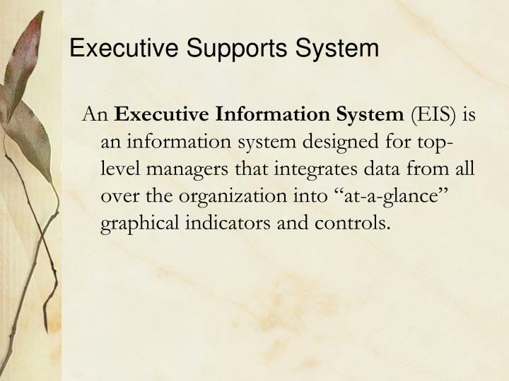 Executive Supports System