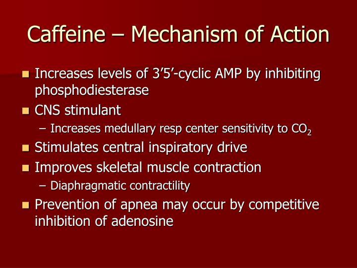 Caffeine – Mechanism of Action