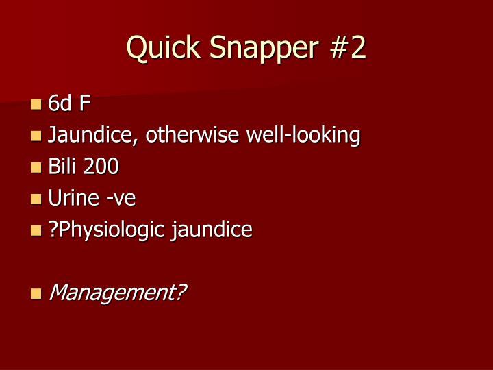 Quick Snapper #2