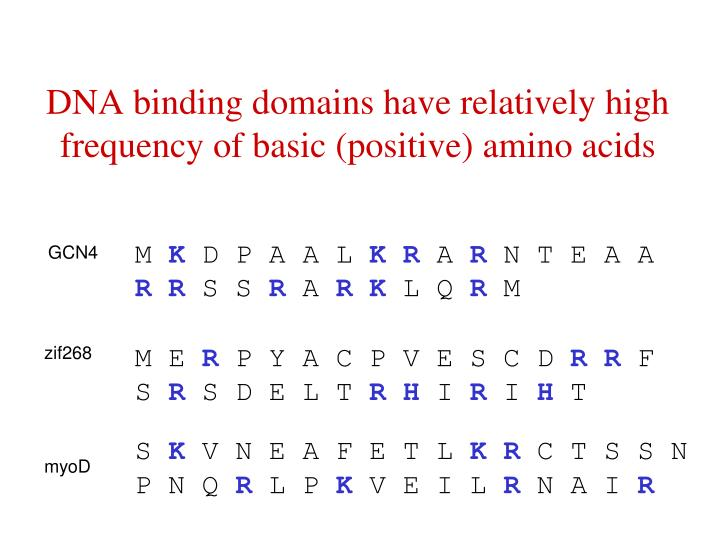 DNA binding domains have relatively high frequency of basic (positive) amino acids