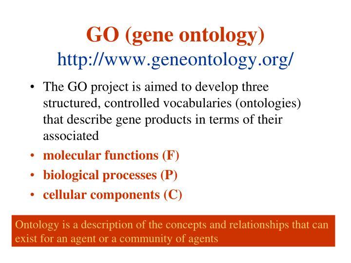 GO (gene ontology)
