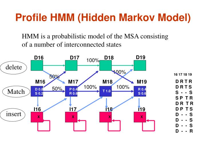 Profile HMM (Hidden Markov Model)
