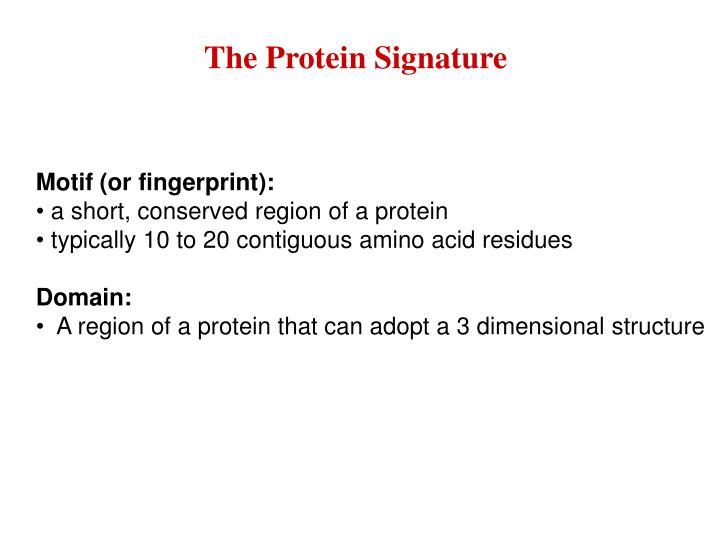 The Protein Signature