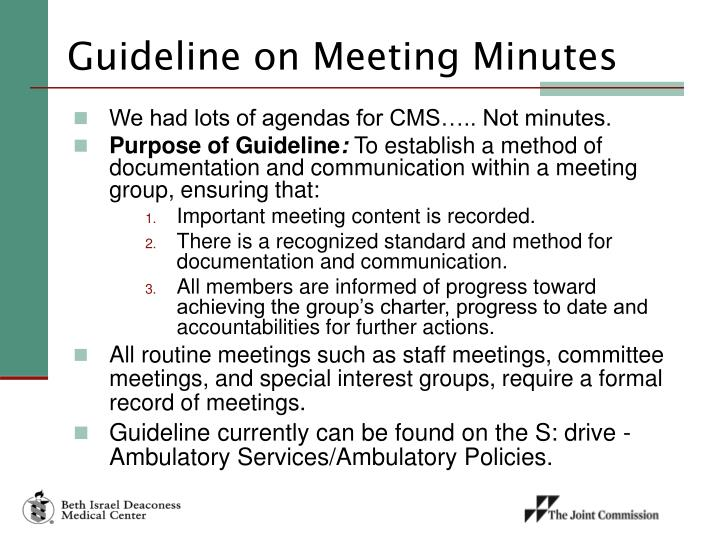 Guideline on Meeting Minutes