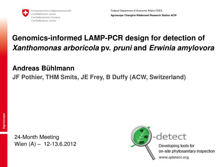 Genomics-informed LAMP-PCR design for detection of