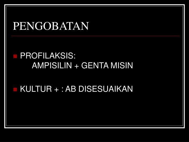 PENGOBATAN