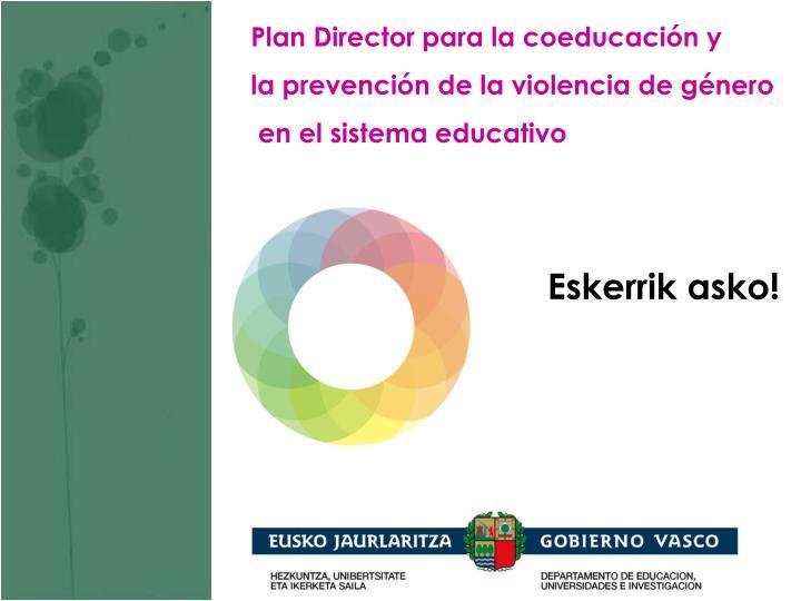 Plan Director para la coeducación y