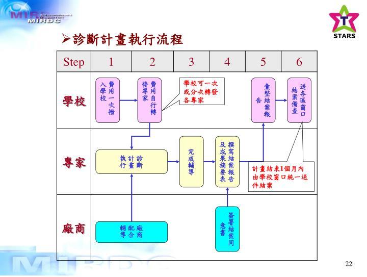 診斷計畫執行流程