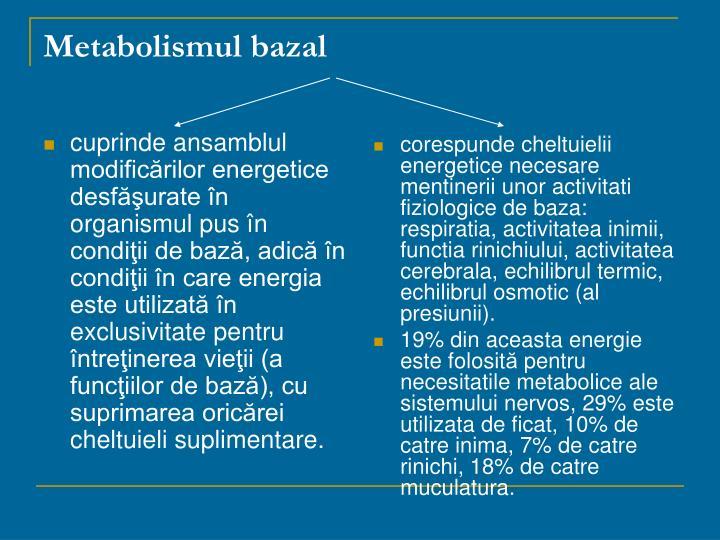 cuprinde ansamblul modificărilor energetice desfăşurate în organismul pus în condiţii de bază, adică în condiţii în care energia este utilizată în exclusivitate pentru întreţinerea vieţii (a funcţiilor de bază), cu suprimarea oricărei cheltuieli suplimentare.