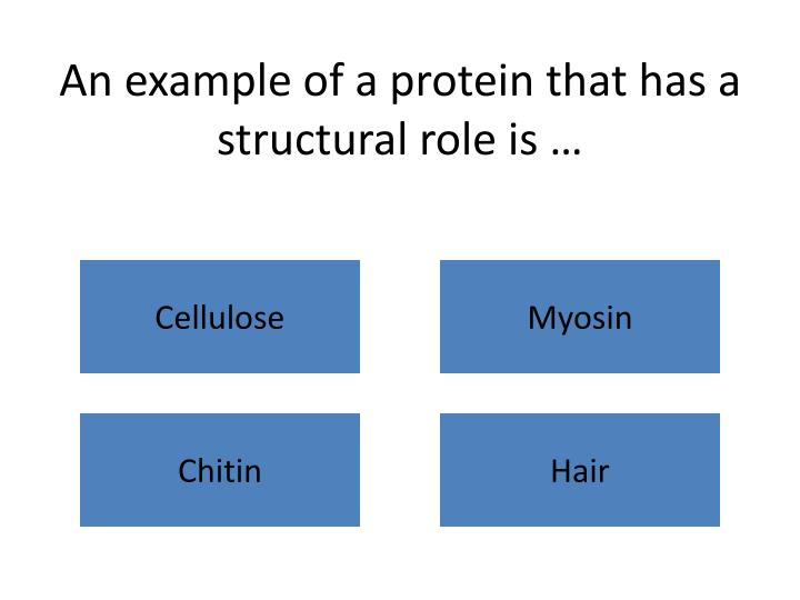 An example of a protein that has a structural role is …
