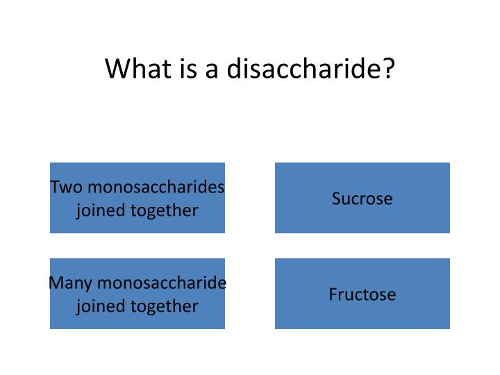 What is a disaccharide?