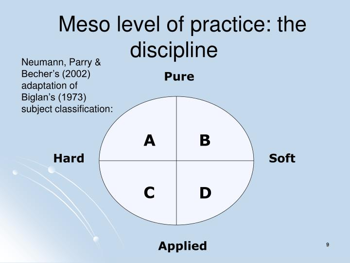 Meso level of practice: the discipline