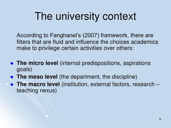 The university context