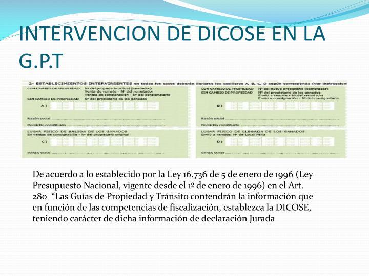INTERVENCION DE DICOSE EN LA G.P.T