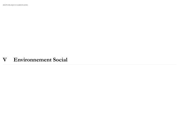 VEnvironnement Social