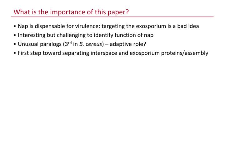 What is the importance of this paper?
