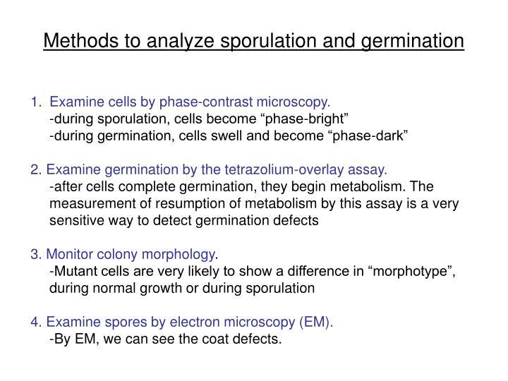 Methods to analyze sporulation and germination