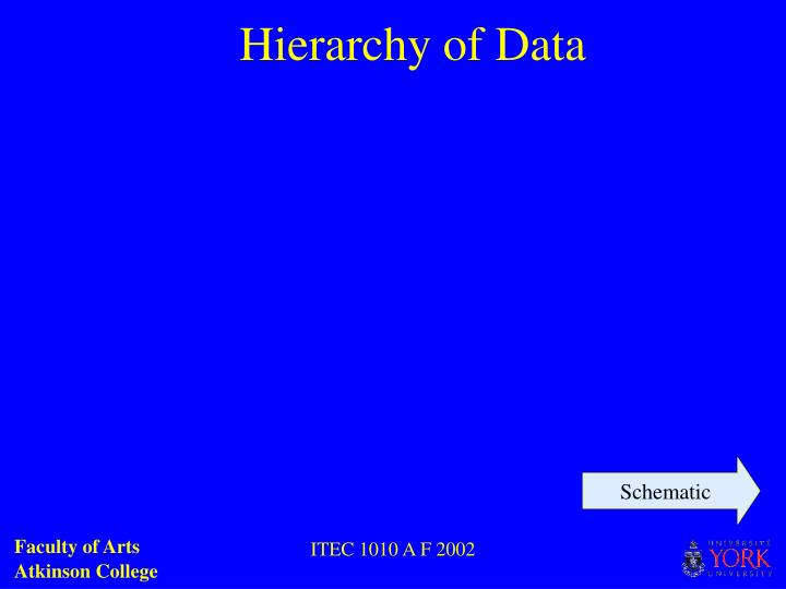 Hierarchy of Data