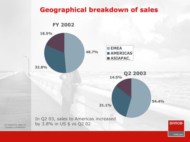 Geographical breakdown of sales