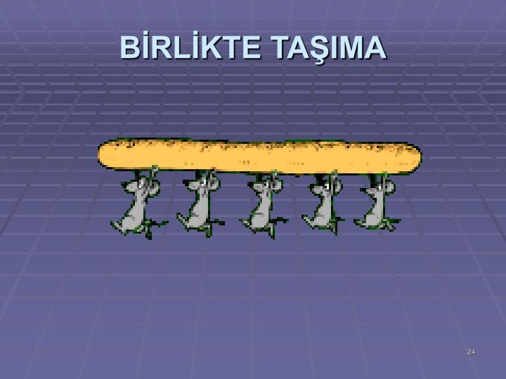 BRLKTE TAIMA