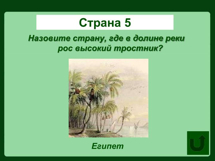 Страна 5
