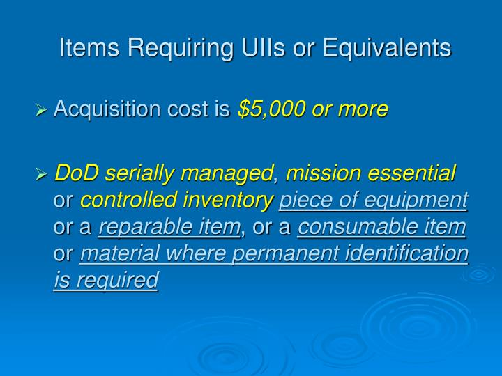 Items Requiring UIIs or Equivalents