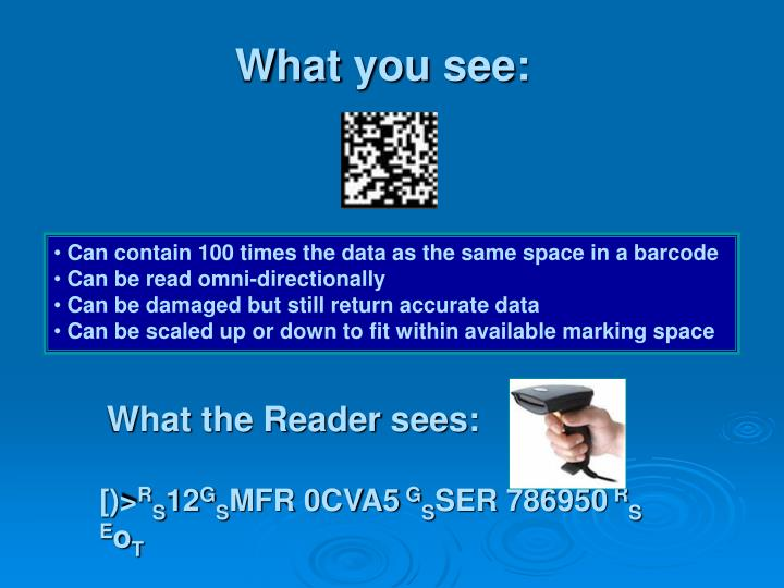 What you see: