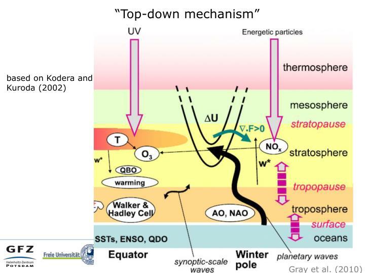 """""""Top-down mechanism"""""""