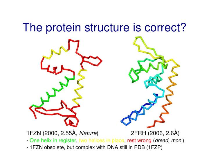The protein structure is correct?