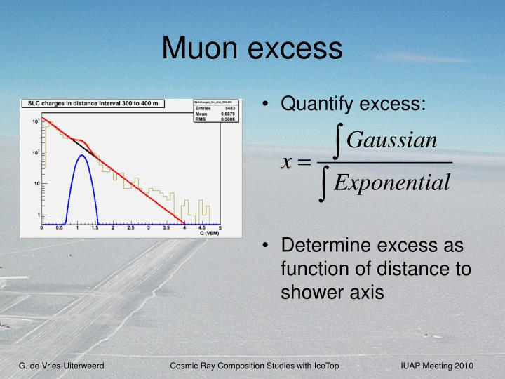 Muon excess