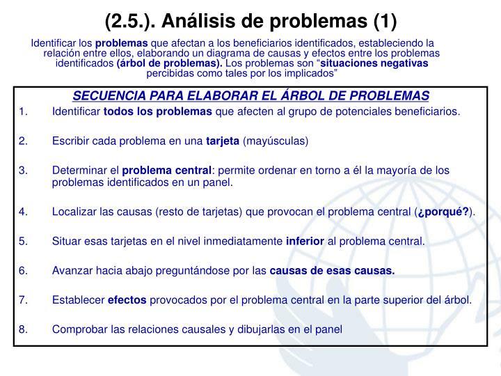(2.5.). Análisis de problemas (1)