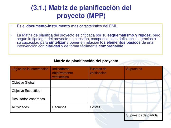 (3.1.) Matriz de planificación del proyecto (MPP)