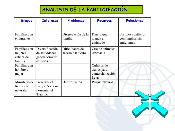 ANALISIS DE LA PARTICIPACIÓN