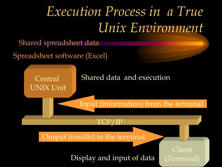 Execution Process in  a True Unix Environment
