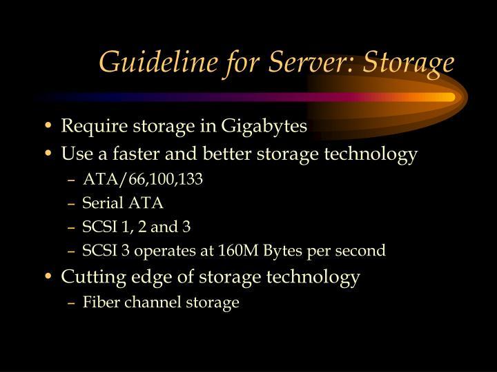 Guideline for Server: Storage
