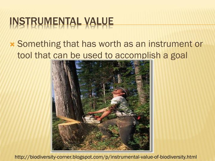 Something that has worth as an instrument or tool that can be used to accomplish a goal