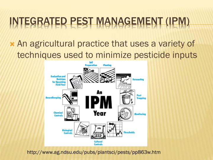An agricultural practice that uses a variety of techniques used to minimize pesticide inputs