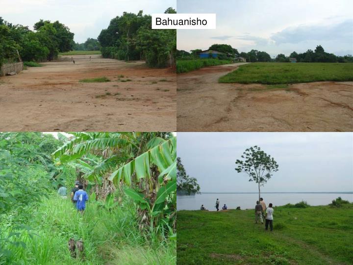Bahuanisho