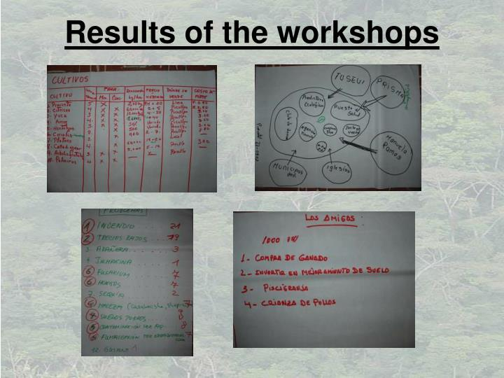 Results of the workshops