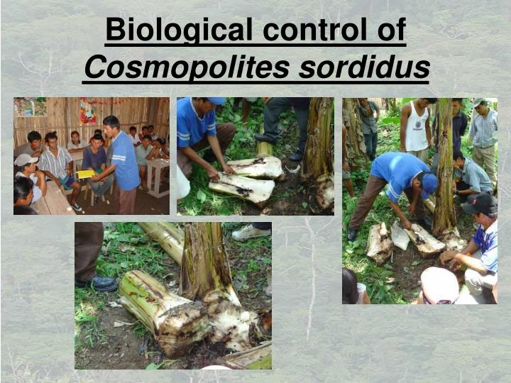 Biological control of