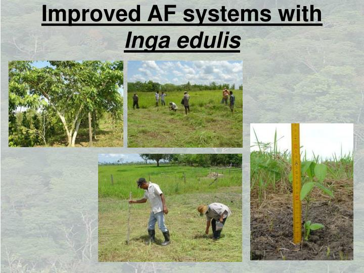 Improved AF systems with