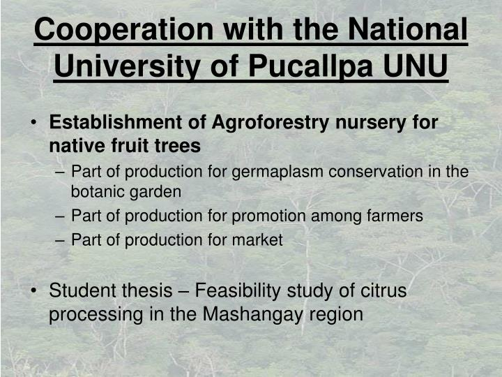 Cooperation with the National University of Pucallpa UNU