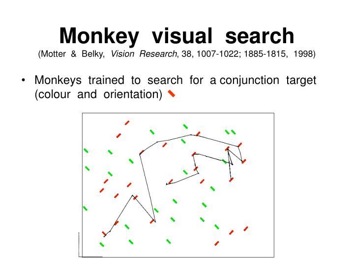 Monkey  visual  search