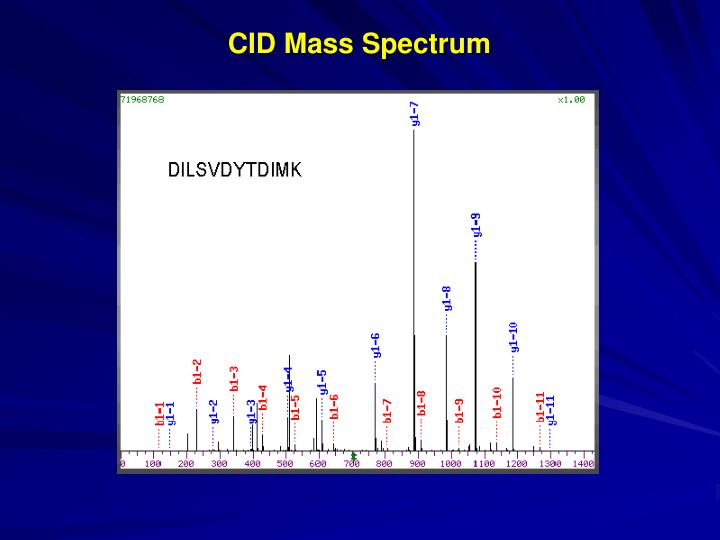 CID Mass Spectrum