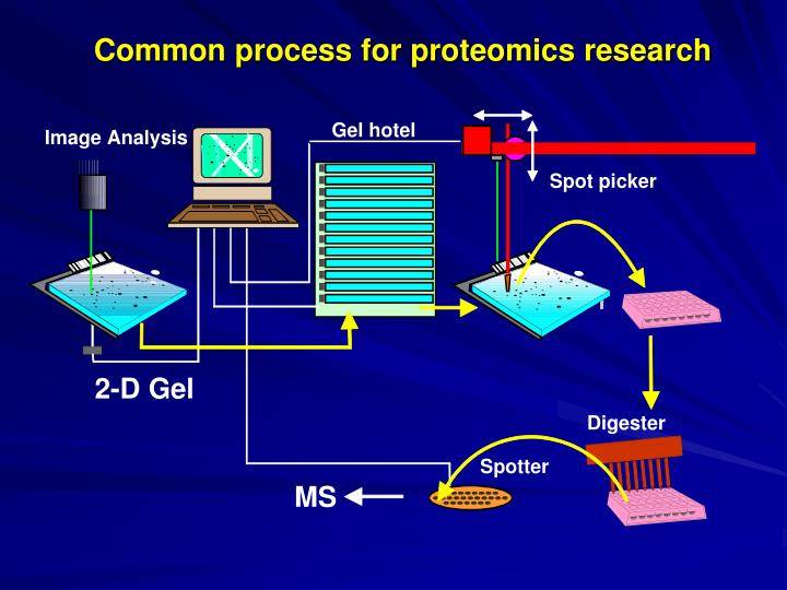 Common process for proteomics research