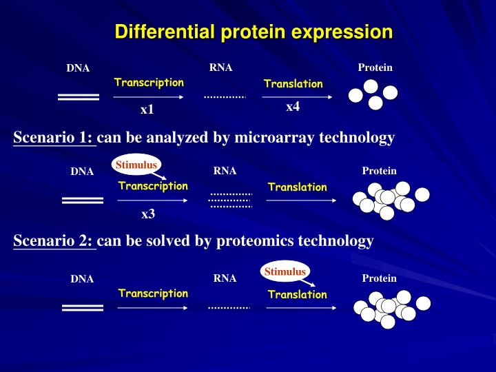 Differential protein expression